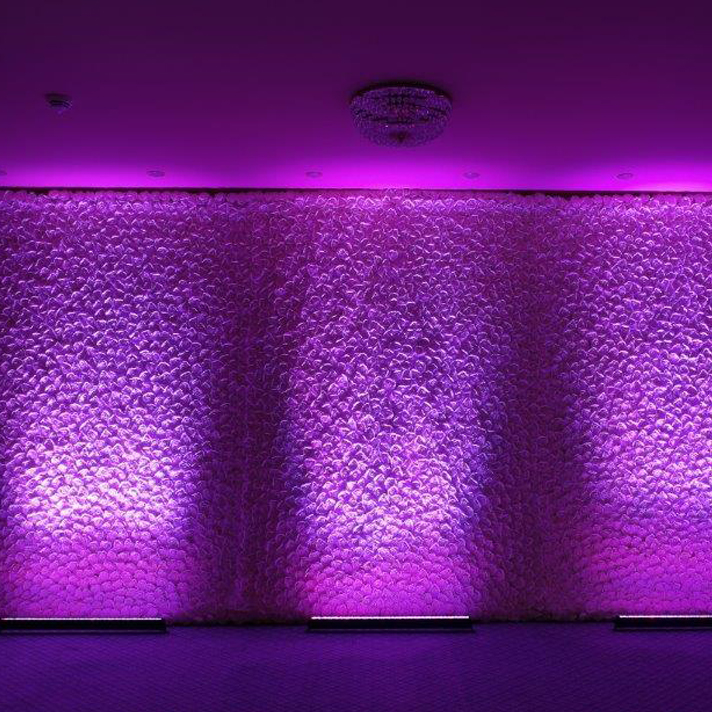LED Floral wall hire